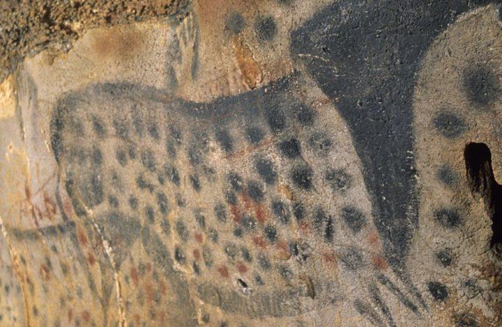 Grotte du Pech Merle & Musée de la Préhistoire à Cabrerets